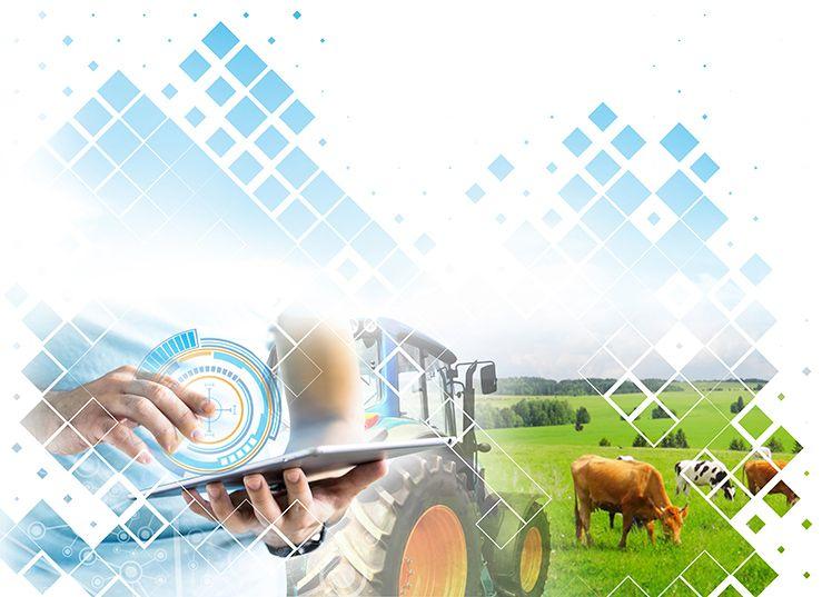 Polo de Innovación Dixital do Sector Agroalimentario Galego - Gradiant - Campus Terra USC